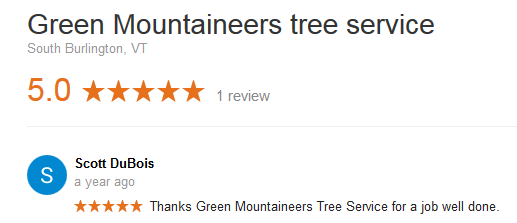 google vermont tree services review